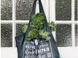 Bulk Food Bag Set