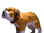 Bull dog model