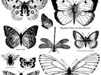 Butterflies IOD Decor Stamp