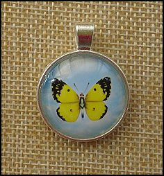 Butterfly Glass Dome Key Ring