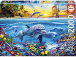 buy at www.puzzlesnz.co.nz Educa 2000 piece jigsaw puzzle Family of Dolphins