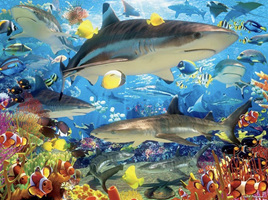 Ceaco 1500 Piece Jigsaw Puzzle: Reef Sharks