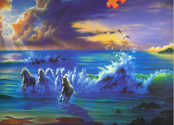 buy at www.puzzlesnz.co.nz Ravensburger 3000 piece jigsaw puzzle Ocean Dreams