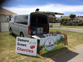 Buy cherries from our roadside stall - Oamaru, Evergrow Orchard