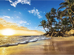 buy Clementoni 1500 piece jigsaw puzzle Tropical Sunrise at www.puzzlesnz.co.nz