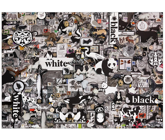 buy Cobble Hill 1000 piece puzzle Black & White Animals at www.puzzlesnz.co.nz