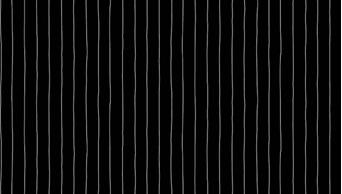 Buzzin Around Stripe Black 29384K