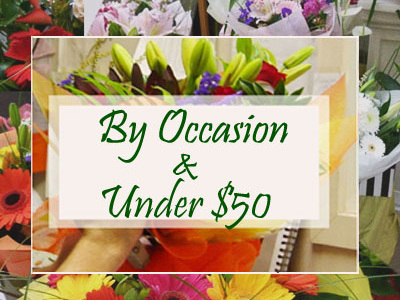 By Occasion & Under $50