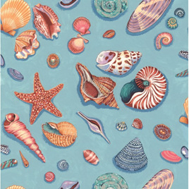 By The Sea Shells NT11720104