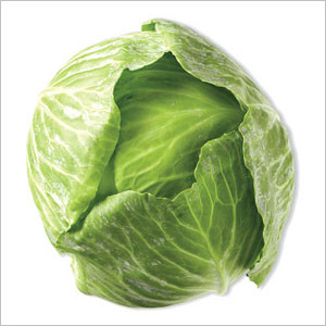 Cabbage Green Certified Organic Each