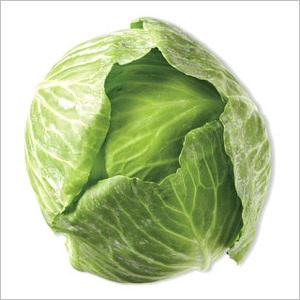 Cabbage Green Sprayfree Each