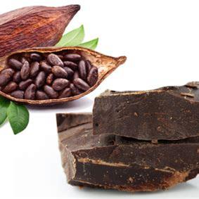 Cacao Paste Drops (Raw Cacao Liquor) Approx 100g