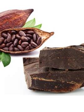 Cacao Paste (Raw Cacao Liquor) Organic 1kg Block