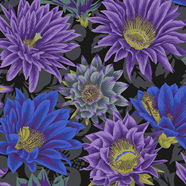 Cactus Flower Black PWPJ096105