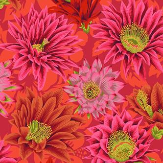 Cactus Flower Red PWPJ096103