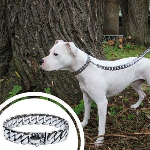 Big Dog Chains - Caesar XL Dog Collar and Leash