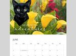 calendar 2022