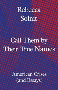 Call Them by Their True Names: American Crises (and Essays)
