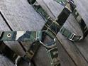 Camo slim nylon supatuff harness by rogue royalty