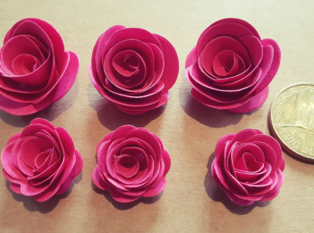 Candy pink mini roses