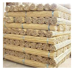 Cane Natural Bamboo Stakes 240cm Nat 18-20mm 100 pc