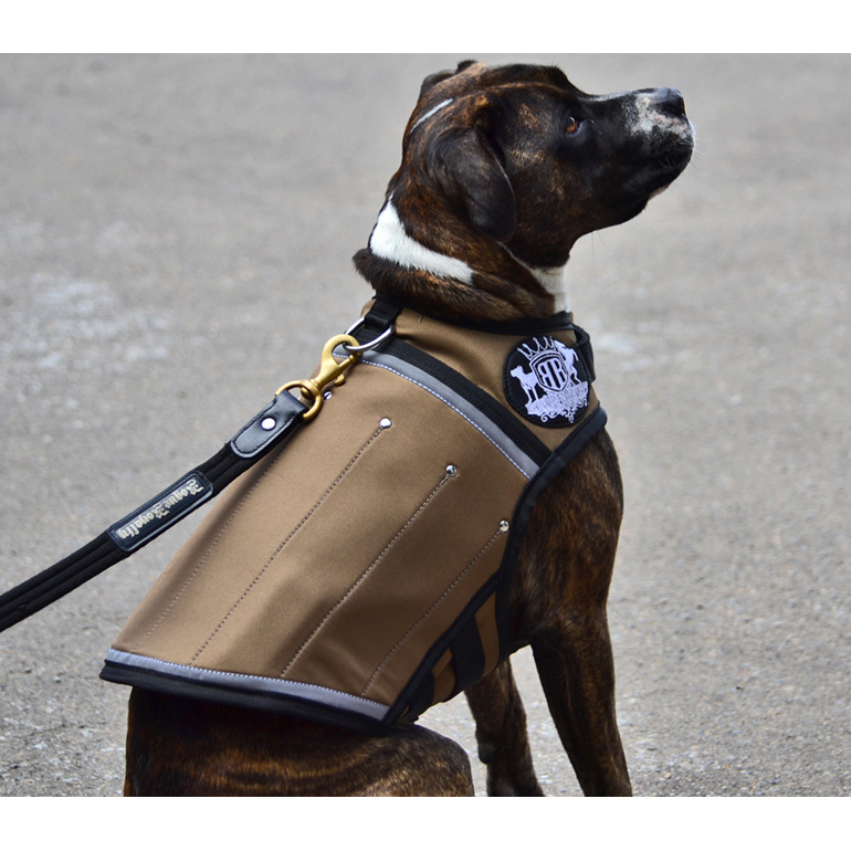 Canine Weight Vest by Rogue Royalty