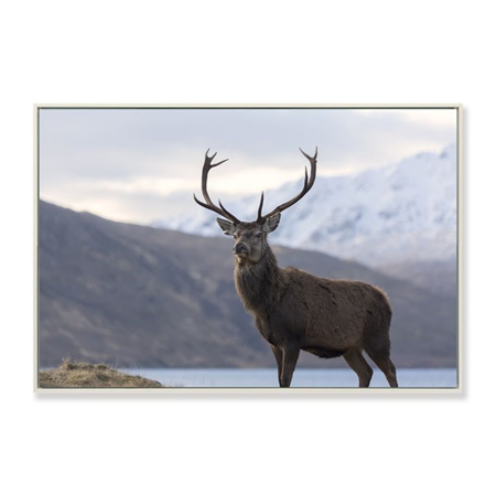 Canvas Standing Strong Framed Print 90x60cm