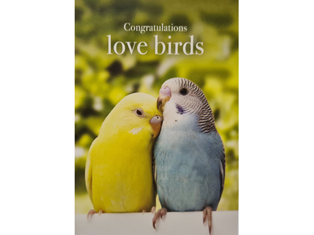"Card ""Congratulations Love Birds"""
