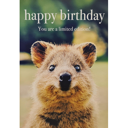 "Card "" Happy Birthday. You Are A Limited Addition!"""