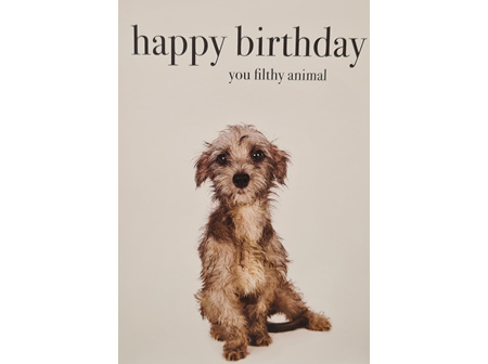 "Card "" Happy Birthday You Filthy Animal"""