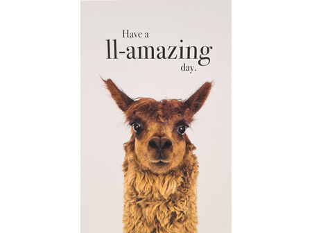 "Card "" Have A LL-Amazing Day"""