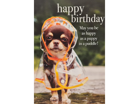 "Card ""Puppy In A Puddle"""
