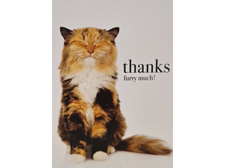 "Card "" Thanks Furry Much"""