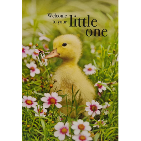 "Card "" Welcome To Your Little One"""