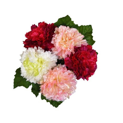 Carnation posy  1234