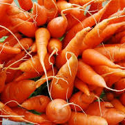 Carrots Table Grade Certified Organic Approx 500gr