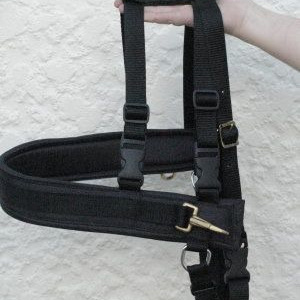 Carting Harness