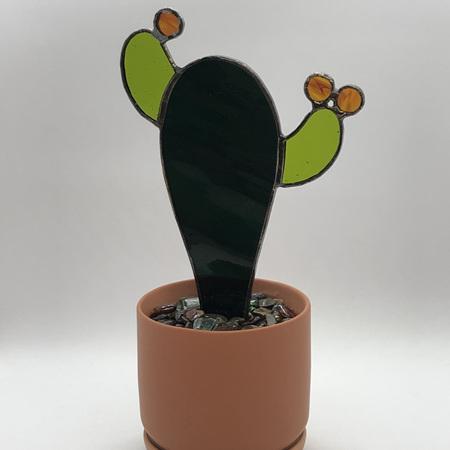 Cartoon Cactus 2021