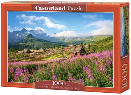 Castorland 1000 Piece Jigsaw Puzzle: Tatras Poland