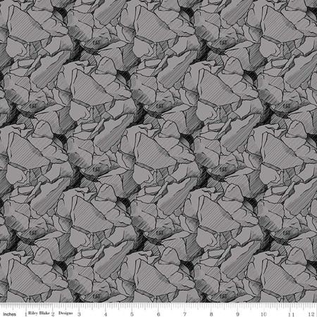 CAT Rocks Gray C9101