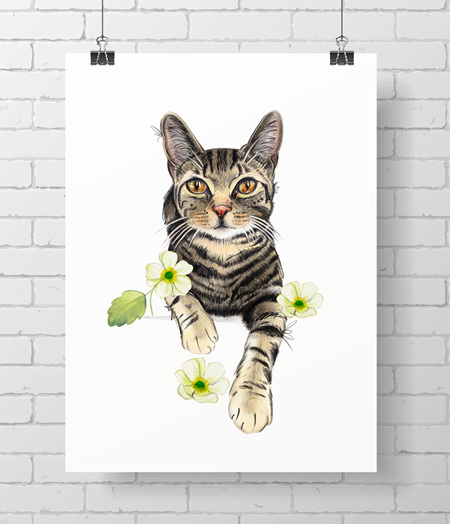 cat - tabby