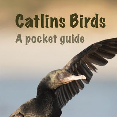 Catlins Birds - A Pocket Guide
