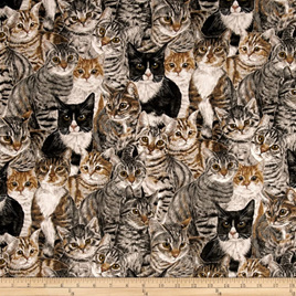 Cats the Way I Like It - Multi Color