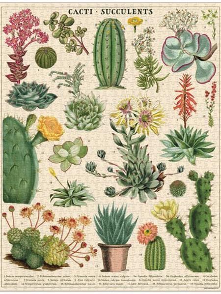 Cavallini 1000 Piece Puzzle - Cacti & Succulent