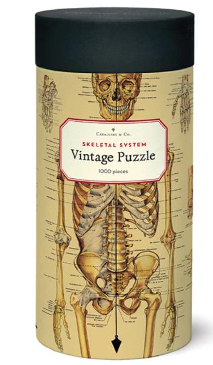 Cavallini & Co Vintage Poster 1000 Piece Jigsaw Puzzle: Skeletal System
