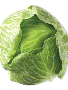 Certified Organic Cabbage - Green (Large)