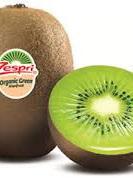 Certified Organic Kiwifruit (Green) - 500g