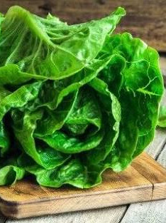 Certified Organic Lettuces (Cos) - 1 head