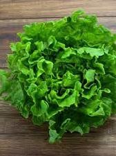 Certified Organic Lettuces (Green Frilly Batavia & Oak) - 1 head