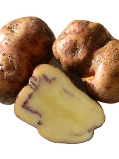 Certified Organic Potatoes(Heritage Maori Potato) - 1Kg